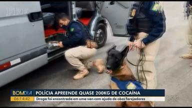 Polícia apreende quase 200 quilos de cocaína - Droga foi encontrada em uma van com ajuda de cães farejadores.