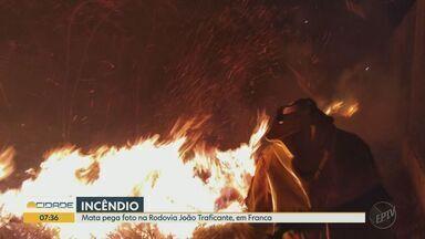Incêndio atinge mata ao lado da Rodovia João Traficante, em Franca, SP - Com duas viaturas, Corpo de Bombeiros conseguiu apagar as chamas.