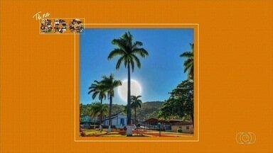 Veja quem acorda cedo com o Bom Dia Goiás - Comece o dia bem-informado e participe por meio das nossas redes sociais o app QVT.