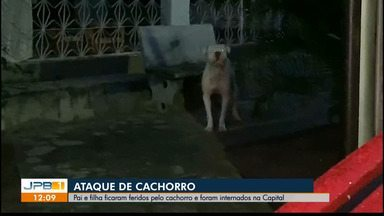 Pai e filha são internados após ataque de cachorro - Caso aconteceu em João Pessoa.