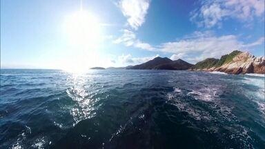 Reveja uma expedição por uma das regiões mais bonitas do Brasil: a Baía de Ilha Grande - Duzentas ilhas, mais de 100 praias. Na terra, no céu e no fundo mar, a natureza em equilíbrio. Prepare-se para uma aventura de tirar o fôlego nesta sexta (31).
