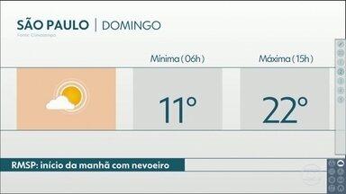 Domingo tem previsão de nevoeiro em São Paulo - Estiagem vai marcar a primeira quinzena de agosto. Veja como ficam as temperaturas, na próxima semana.