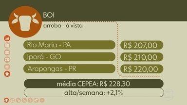Confira a cotação do boi gordo na semana - Média CEPEA fechou a semana com alta.