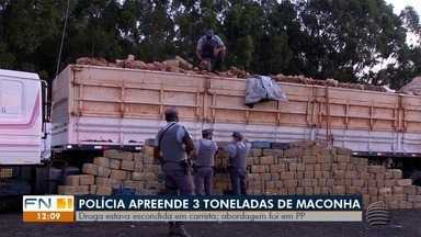 Polícia apreende cerca de três toneladas de droga em Presidente Prudente - Ocorrência foi registrada na Rodovia Raposo Tavares (SP-270).