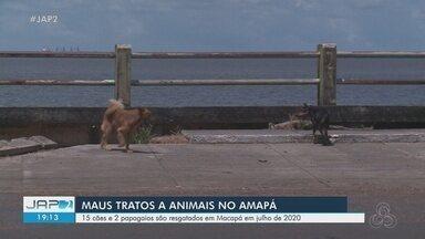 Delegacia de Meio Ambiente resgatou quase 20 animais vítimas de maus-tratos em Macapá - Entre as espécies estão cães e pássaros. Dema orienta sobre gravidade da prática e alerta para a realização de denúncias.