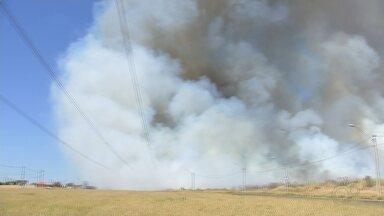 Queimada atinge plantação de cana-de-açúcar em Rio Preto - Uma queimada atingiu uma plantação de cana-de-açúcar, no bairro Luz da Esperança, em São José do Rio Preto (SP), nesta sexta-feira (7).