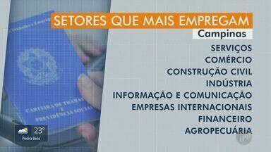 Vagas de emprego oferecidas pela indústria no CPAT, em Campinas, diminuem 56,4% em 2020 - Quantidade baixou de 156, em 2019, para 68 no primeiro semestre deste ano. Setores de serviços, construção civil e comércio também registraram baixas no período.