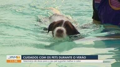 Cuidados com os pets durante o verão amazônico devem ser redobrados - Veterinário dá dicas para o seu pet suportar melhor o calor.