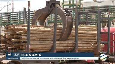Soja e celulose se destacam no aumento das exportações - Soja e celulose se destacam no aumento das exportações