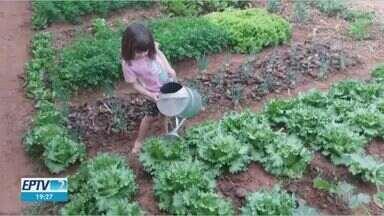 EPTV2 de 10 de agosto mostra o que o público faz em casa enquanto respeita o isolamento - A horta da Ana Cecília, o presente do papai Alexandre, cafezinho na chácara...