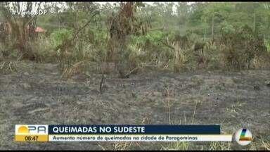 Aumenta número de queimadas na cidade de Paragominas - Aumenta número de queimadas na cidade de Paragominas