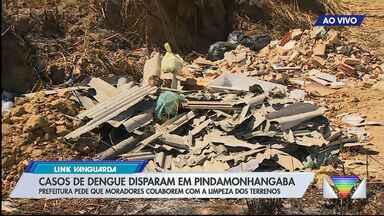 Casos de dengue aumentam em Pinda - Prefeitura pede que moradores colaborem com a limpeza dos terrenos