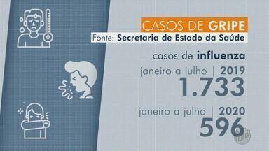Cai o número de casos confirmados de gripe Influenza em SP - Houve uma queda de 65,6% em todo estado em relação ao ano passado.