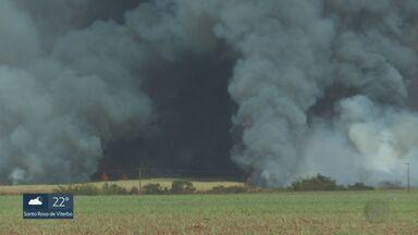 Região de Ribeirão Preto registra queimadas e céu escuro - Moradores de Sertãozinho, Cajuru e Ribeirão Preto relataram focos de incêndio na tarde desta quarta-feira (12).