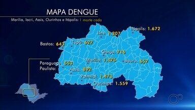 Confira o balanço dos casos de dengue no centro-oeste paulista - Cidades atualizaram os números de casos confirmados da doença, incluindo os casos de mortes.