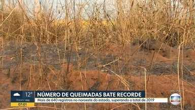 Número de queimadas bate recorde - Mais de 640 registros no noroeste do Estado, superando o total de 2019.
