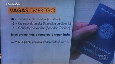 Confira as vagas de emprego disponíveis em Goiás - Entre as oportunidades está a de analista comercial. É necessário ter CNH.
