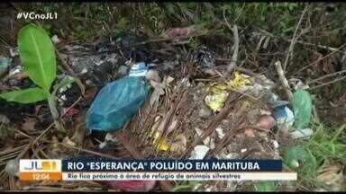 Moradores denunciam rio poluído em Marituba, no Pará - Moradores denunciam rio poluído em Marituba, no Pará