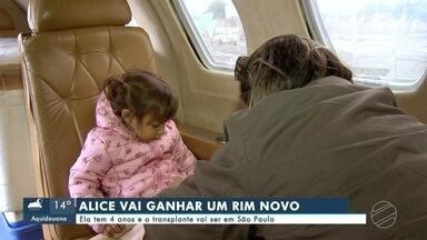 Alice, de 4 anos, ganhará rim novo; transplante será em São Paulo - Alice, de 4 anos, ganhará rim novo; transplante será em São Paulo