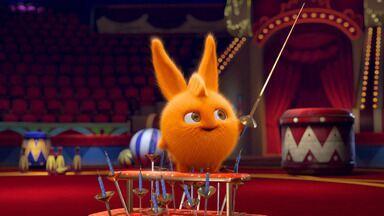 A Maleta Do Mágico - Sunny Bunnies estão de volta ao circo. Os coelhos precisam fazer uma inspeção e Hopper acaba dentro do estojo do mágico. As tentativas de salvar o amigo, se tornam um show de circo.