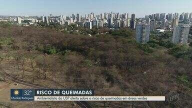 Ambientalista da USP faz alerta sobre risco de queimadas em Ribeirão Preto - Incêndio em áreas verdes dá força à massa de ar seco.