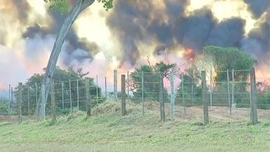 Fumaça provocada por queimada interdita a rodovia Marechal Rondon - A fumaça de uma queimada provocou a interdição das duas faixas da rodovia Marechal Rondon, entre Bento de Abreu e Valparaíso (SP), na tarde deste sábado (5).