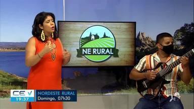 Veja os destaques do Nordeste Rural - Saiba mais em: g1.com.br/ce