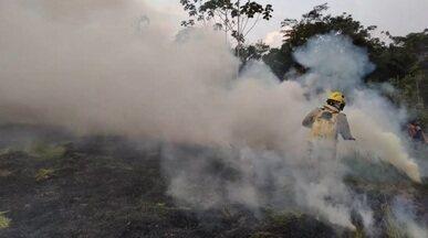 Incêndio destrói área em Cruzeiro do Sul - Incêndio destrói área em Cruzeiro do Sul