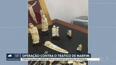 Polícia Federal faz operação em São Paulo para combater o tráfico de marfim - Investigação começou depois da apreensão de peças feitas com o material na região da avenida Paulista.