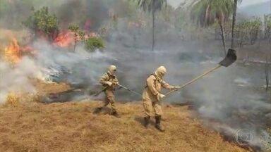 Organizações enviam ao governo propostas para conter desmatamento na Amazônia - O desmatamento acelerado e o aumento dos focos de queimada, que agora incendeiam serras, florestas e o Pantanal, uniram quem já esteve em campos que pareciam opostos. Ambientalistas e empresários do agronegócio estão juntos em busca de soluções que não podem mais esperar.