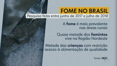 Pesquisa do IBGE apontou que quase 2 milhões de pessoas passam fome em PE - O levantamento foi feito entre junho de 2017 e julho de 2018 e apontou piora na alimentação das famílias brasileiras.