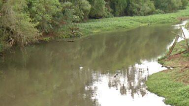 SOS Mata Atlântica divulga relatório sobre as condições da água do Rio Tietê - O documento mostra que a pandemia do novo coronavírus reduziu a mancha de poluição no Rio Tietê.