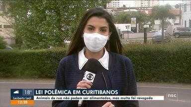 Curitibanos revoga multa aplicada a quem alimentasse animais de rua, mas mantém proibição - Curitibanos revoga multa aplicada a quem alimentasse animais de rua, mas mantém proibição