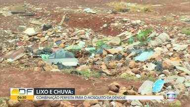 Ceilândia tem o maior número de casos de dengue no DF - A cidade lidera o ranking com 5.006 casos até o dia 5 de setembro e tem quatro mortes pela doença. Lixões irregulares e acúmulo de água atraem o mosquito.