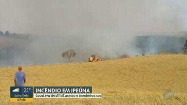Incêndio atinge mata em propriedade rural em Ipeúna - Fogo começou na noite de sábado (26), em local de difícil acesso, e já foi controlado. De acordo com o Corpo de Bombeiros, ninguém ficou ferido.