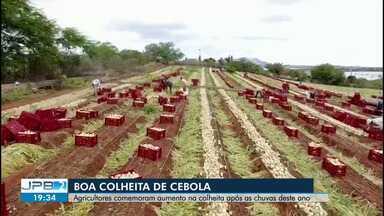 Após chuvas, agricultores comemoram aumento na colheita de cebola - É tanta cebola que os agricultores estão vendendo até para outras cidades da região.