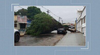 Ventania causa estragos em Rio Branco - Ventania causa estragos em Rio Branco