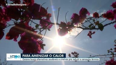 Goianos buscam alternativas para amenizar o forte calor - Sorveterias estão movimentadas nessa época do ano.