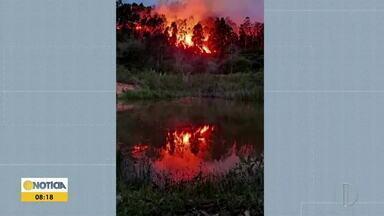 Incêndio atinge Serra do Padre Ângelo, em Conselheiro Pena - Local abriga espécie rara de planta carnívora.