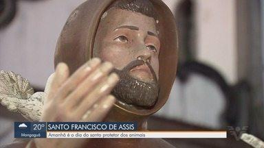 Paróquia de Santos tem programação especial para o Dia de São Francisco de Assis - Santo é considerado o padroeiro dos animais.