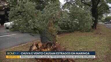 Chuva e vento causam estragos em Maringá - Defesa Civil registrou queda de 110 árvores e dezenas de postes danificados.