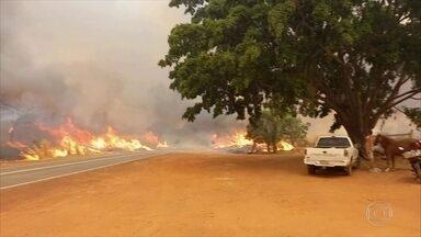 Incêndios atingem com força o interior de SP e obrigam moradores a sair de casa. - O estado de São Paulo registrou uma quantidade recorde de focos de incêndio para o mês de outubro.