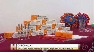 Governo de SP apresenta dados sobre a segurança da vacina CoronaVac - Vacina é produzida pelo laboratório chinês Sinovac em parceria com o Instituto Butantan.