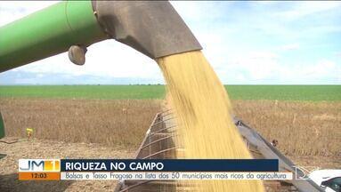 Balsas e Tasso Fragoso estão na lista dos 50 municípios mais ricos da agricultura brasilei - O levantamento foi feito pelo do Ministério da Agricultura, com base na produção de grãos de 2019.