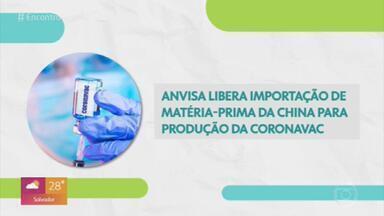 Anvisa libera importação de matéria-prima da Coronavac - Imunizante ainda não teve autorização para ser aplicado e está na fase 3 de testes.