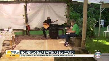 Igreja planta árvores para lembrar mortos pelo coronavírus - Homenagens acontecem em várias cidades do estado.