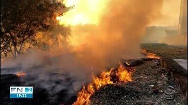 Focos de incêndio mobilizam Corpo de Bombeiros em Presidente Prudente - Um deles foi em uma área de vegetação.