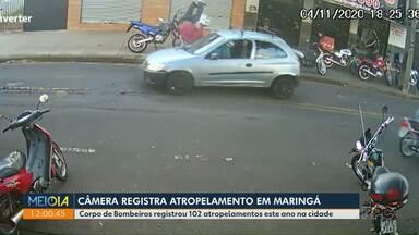 Câmera registra atropelamento em Maringá - Corpo de Bombeiros registrou 102 atropelamentos este ano na cidade.