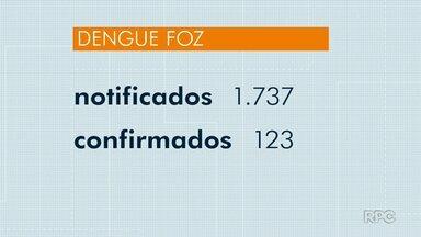 Foz do Iguaçu chega a 1.737 casos notificados de dengue - São 123 casos confirmados.