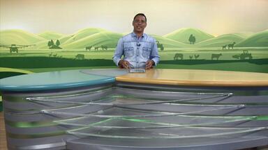 MG Rural - Edição de 15/11/2020 - Esta edição mostra a preocupação dos produtores de leite, em Prata, pela queda no preço do produto. No Campo das Vertentes, quem produz pêssego está animado com o aumento da procura. Reportagem mostra o aquecimento das vendas de maquinário agrícola em Uberaba. Veja também a cotação do boi gordo em Minas Gerais.